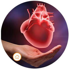 Cardiac Check Up Package - Home Collection