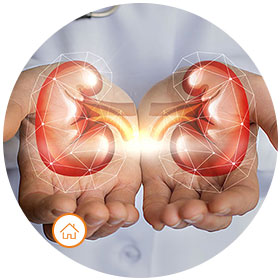 Kidney check Up Package - Home Collection